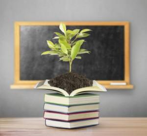 progetti-ecosostenibili-scuola-candidature-premio-non-sprecare-2014-2-420x390
