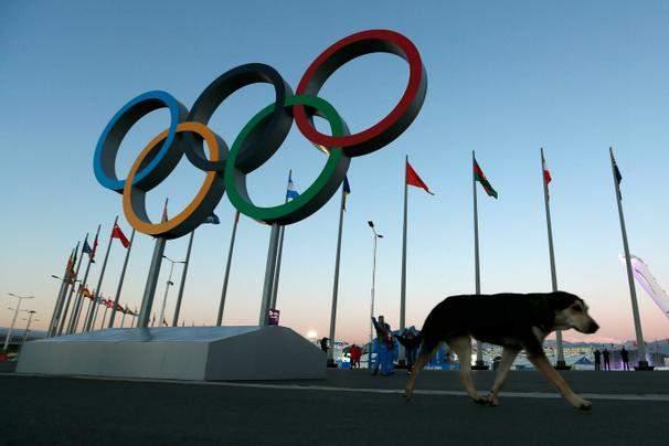 Olympic_AP
